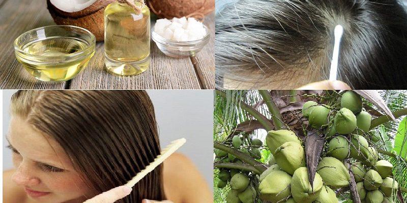Top 5 thực phẩm giúp ngăn ngừa rụng tóc hàng đầu