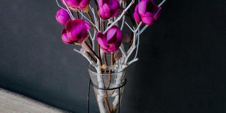 Tất tần tật những điều bạn cần biết trước khi trồng hoa mộc lan